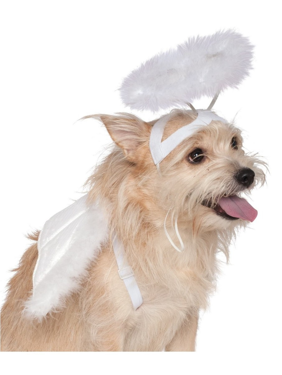 View larger image of Angel Halo Wings Set Classic For Pets