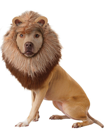 Animal Planet Lion Dog Costume