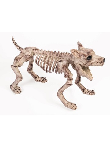 Bone Skeleton Dog Prop for Halloween