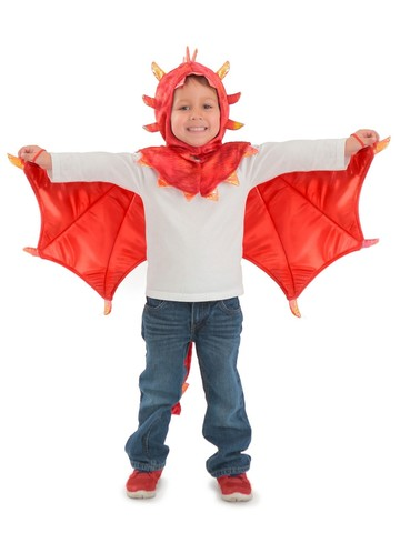 Liam Dragon Hooded Children's Costume