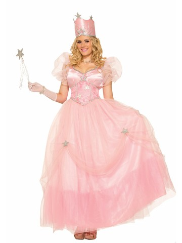 Good Fairy Adult Witch Costume