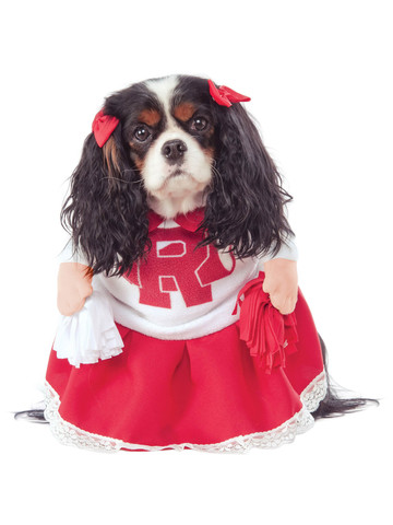 Grease Cheerleader Costume for Pets
