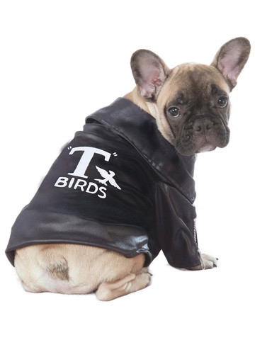 T-Bird Grease Costume for Pets