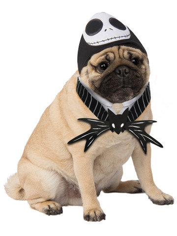 Pet Jack Skellington Costume