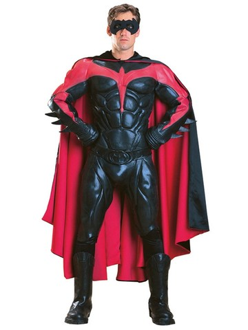 Mens Collectors Robin Costume