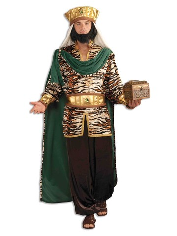 Mens Emerald Wiseman Costume