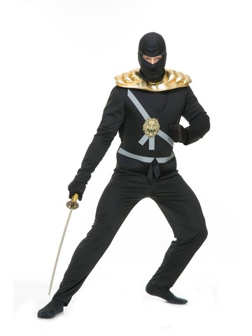 Ninja Avenger with Armor series 1 Costume for Adults