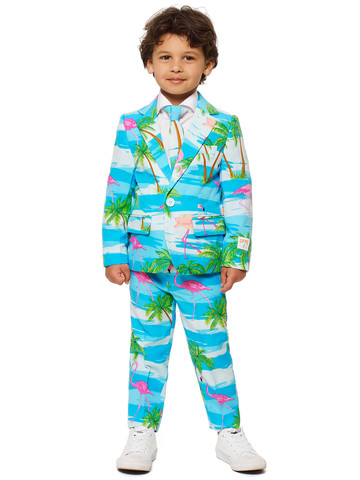 Boy's Beachy Flamingo OppoSuits Set