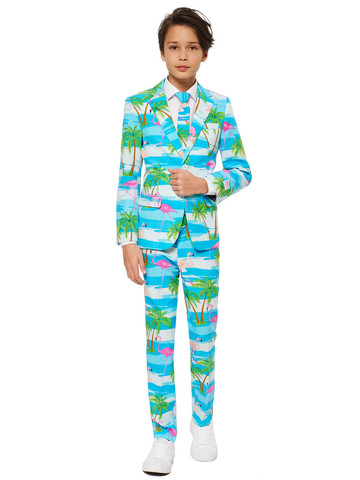 Teen Boy's Tropical Flamingo OppoSuits Set