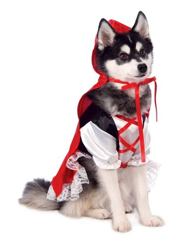 Pet Little Red Riding Hood Costume