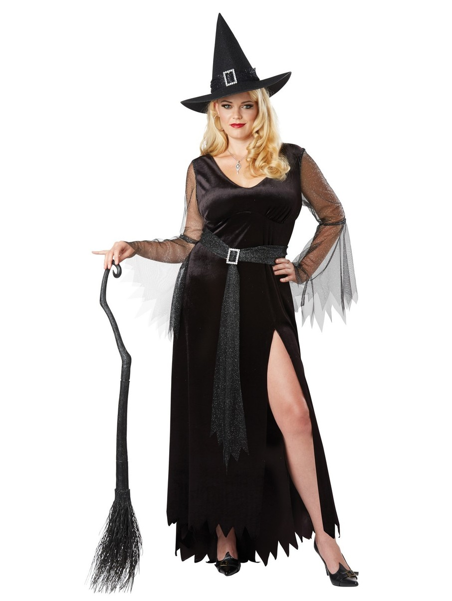 View larger image of Rich Witch Costume Lady's Plus