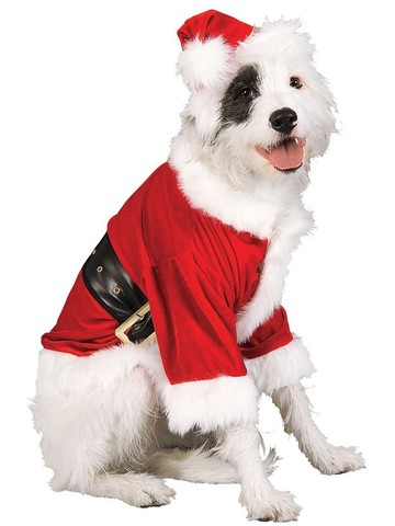 Pet Santa Claus Costume