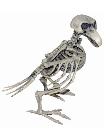Skeletal Bird Prop