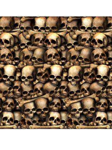 Skull and Bones Backdrop