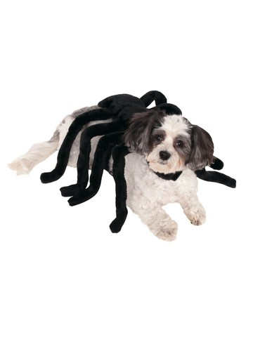 Pet Spider Harness Costume