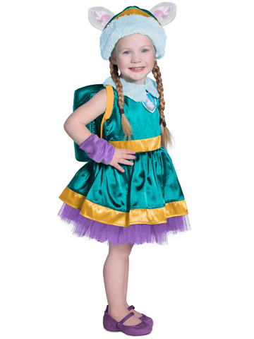 Paw Patrol Everest Costume for Girls