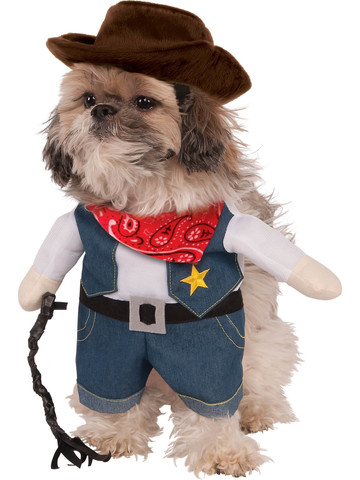Cowboy Costume for Pets