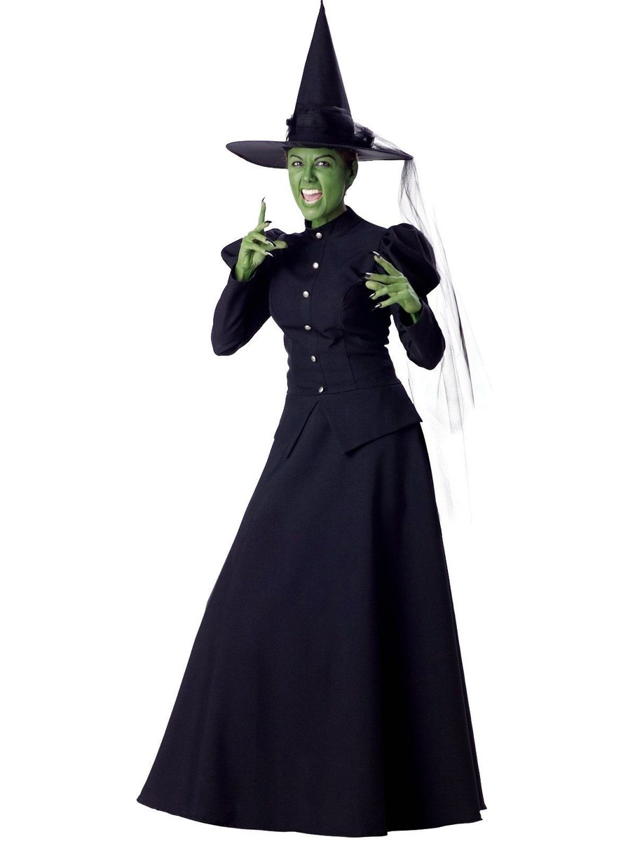 View larger image of Wicked Witch Elite Adult Costume