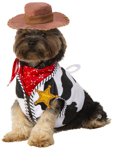 Woody Toy Story Costume for Pets